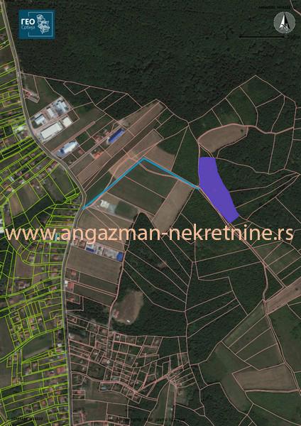 Barajevo šuma 1 56ha ID 8003